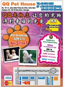 QQ pet house promotion